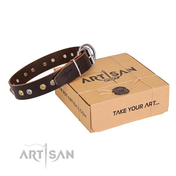 Top notch full grain natural leather dog collar handmade for stylish walking