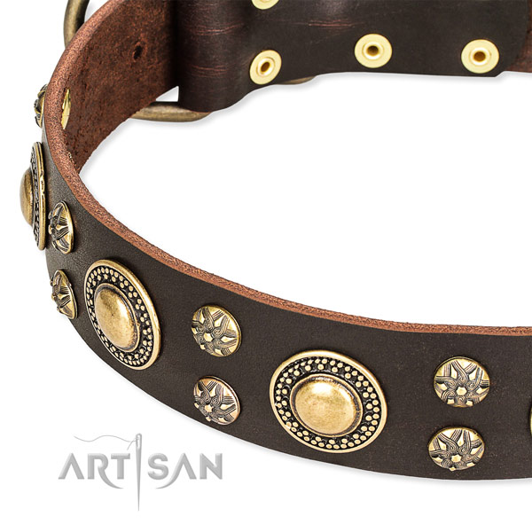 Easy wearing adorned dog collar of top quality full grain leather