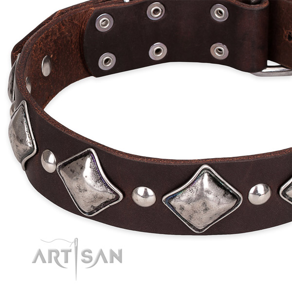 Fancy walking decorated dog collar of strong full grain natural leather