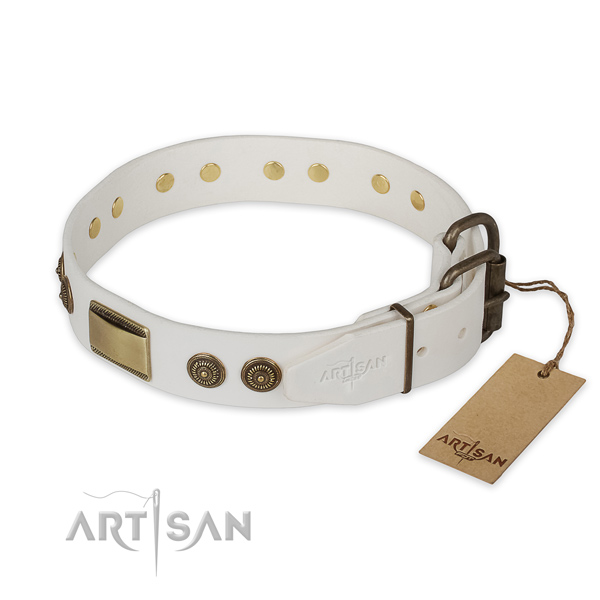 Reliable fittings on natural genuine leather collar for daily walking your four-legged friend