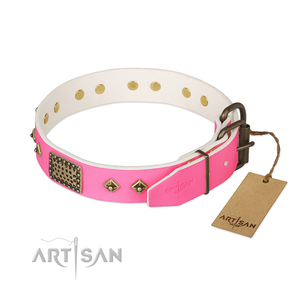 Reliable embellishments on comfortable wearing dog collar