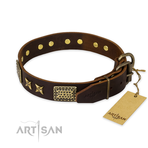Strong traditional buckle on genuine leather collar for your beautiful canine