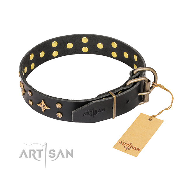 Fancy walking embellished dog collar of top quality full grain genuine leather