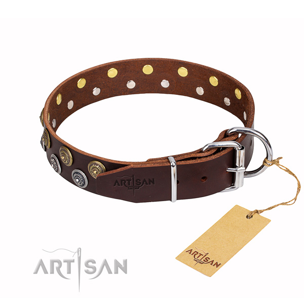 Daily use studded dog collar of reliable full grain leather