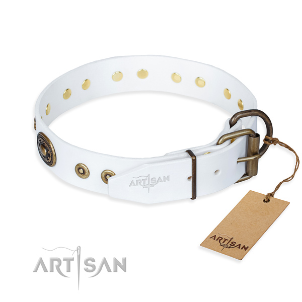 Full grain leather dog collar made of quality material with durable adornments