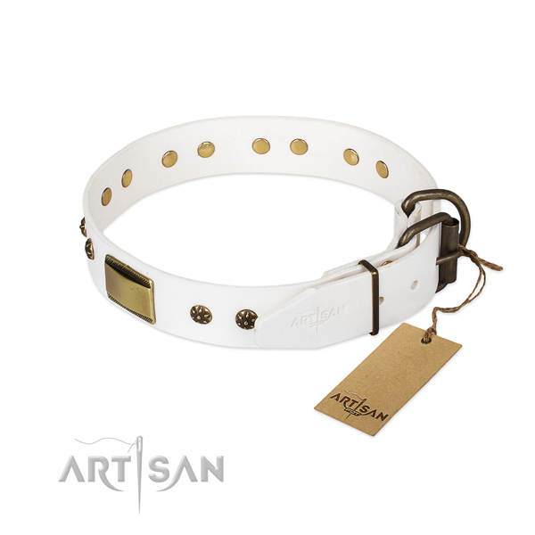 Genuine leather dog collar with reliable buckle and embellishments