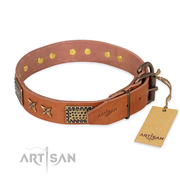 Rust-proof buckle on full grain leather collar for your stylish canine