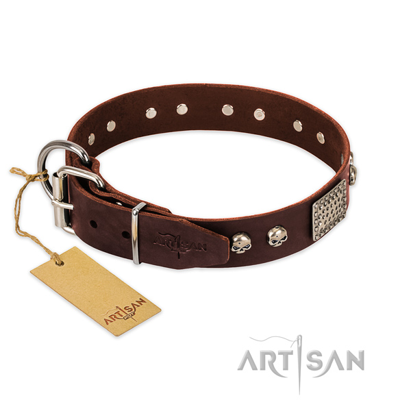 Reliable adornments on everyday use dog collar