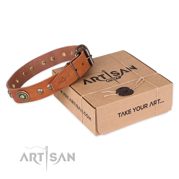 Rust-proof buckle on full grain natural leather dog collar for everyday use