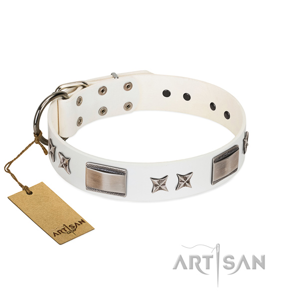 Extraordinary dog collar of genuine leather