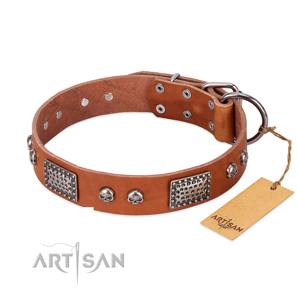 Easy to adjust leather dog collar for daily walking your doggie