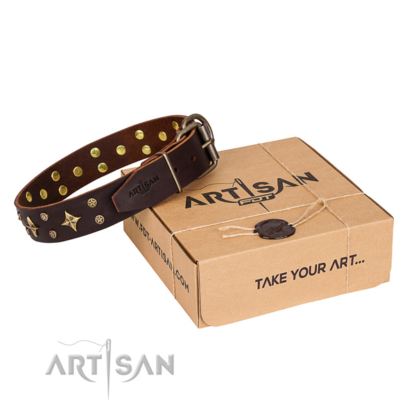 Comfy wearing dog collar of quality full grain leather with adornments