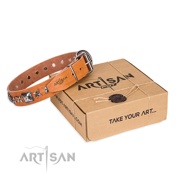 Everyday walking dog collar of top notch full grain leather with embellishments