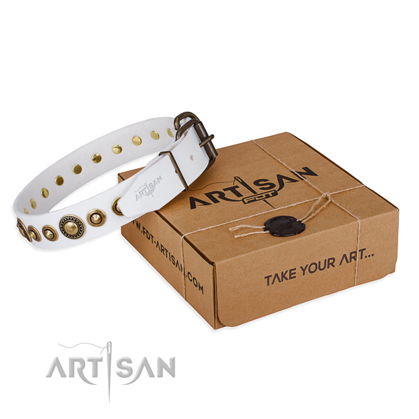 Gentle to touch full grain natural leather dog collar handcrafted for everyday use
