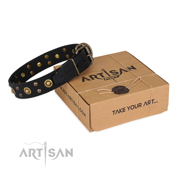 Corrosion proof fittings on full grain leather collar for your stylish canine