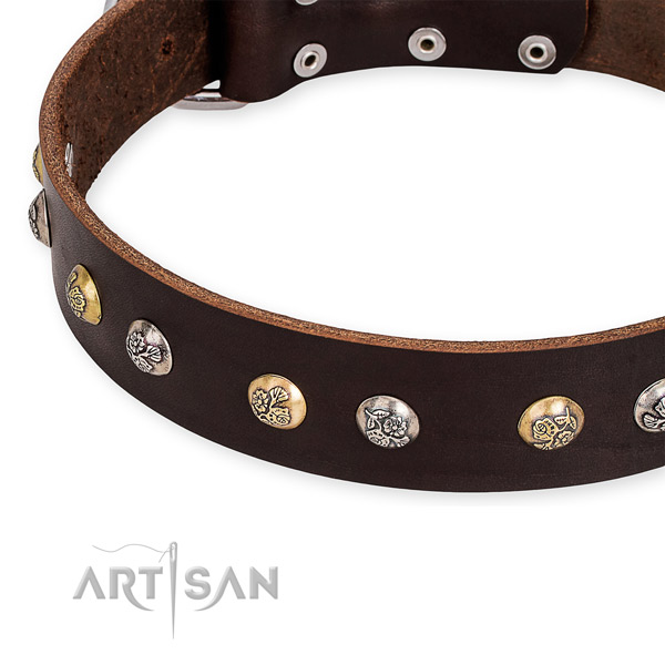 Full grain leather dog collar with stylish design strong decorations