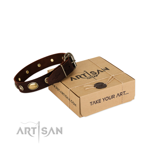Durable traditional buckle on natural leather dog collar for your dog