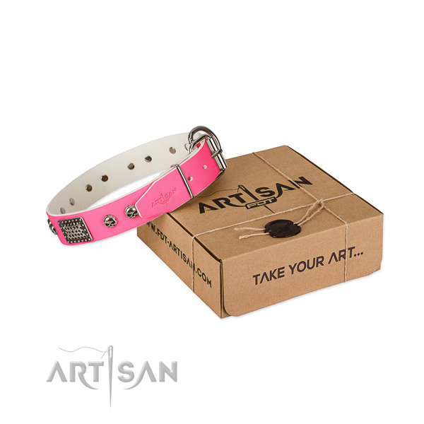 Durable adornments on dog collar for daily use
