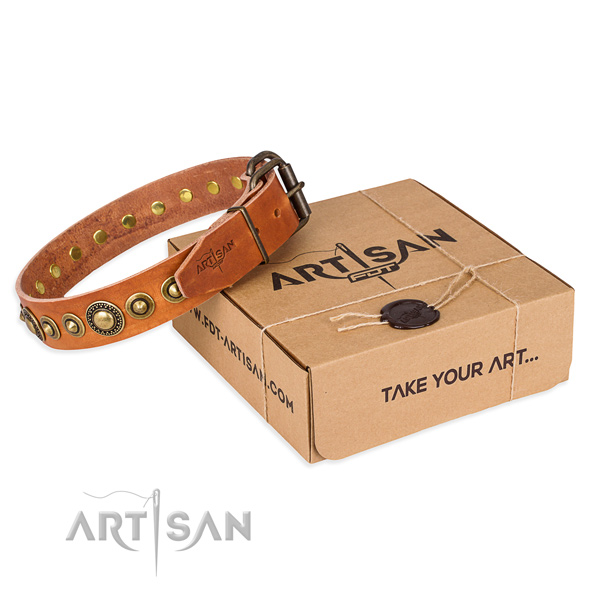 Strong natural genuine leather dog collar crafted for everyday walking