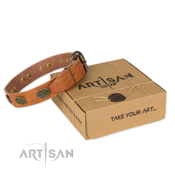 Corrosion resistant hardware on full grain leather collar for your lovely four-legged friend