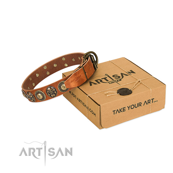 Rust-proof hardware on dog collar for comfortable wearing