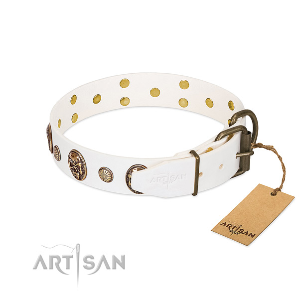 Reliable D-ring on leather collar for stylish walking your pet