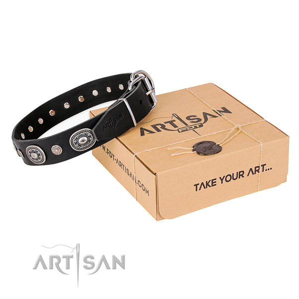 Best quality leather dog collar created for daily use