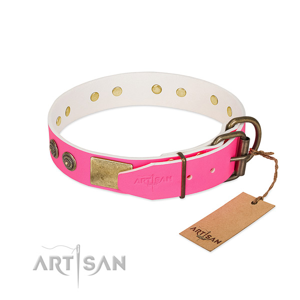 Reliable buckle on full grain leather collar for walking your pet