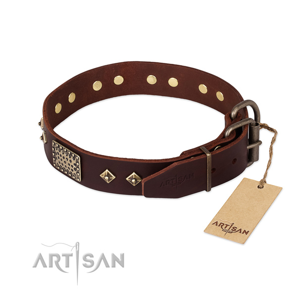 Genuine leather dog collar with reliable fittings and decorations