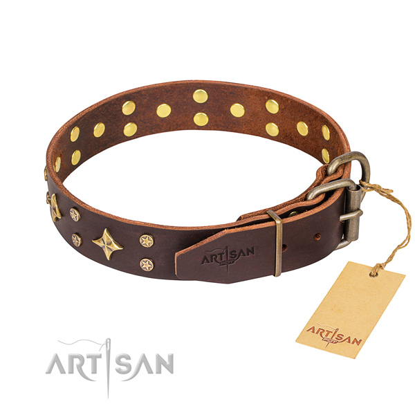 Everyday use decorated dog collar of reliable full grain leather