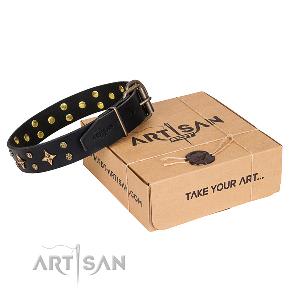 Basic training dog collar of top quality full grain genuine leather with adornments
