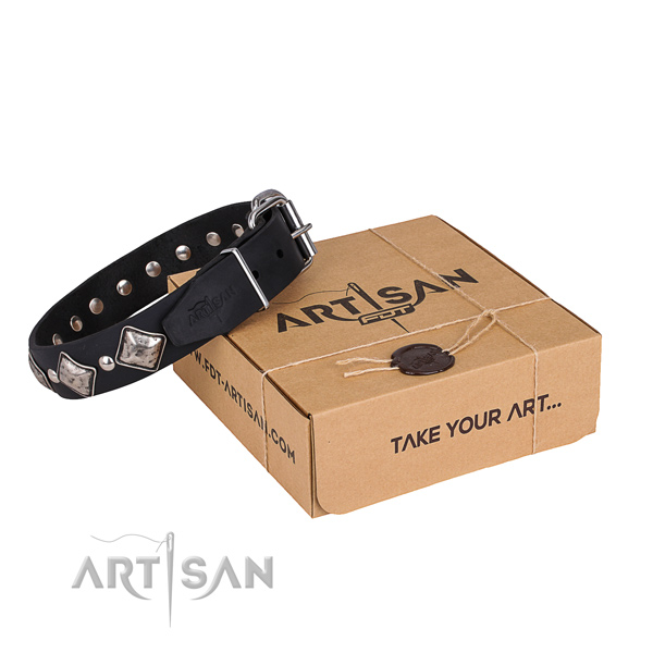 Basic training dog collar of best quality leather with decorations