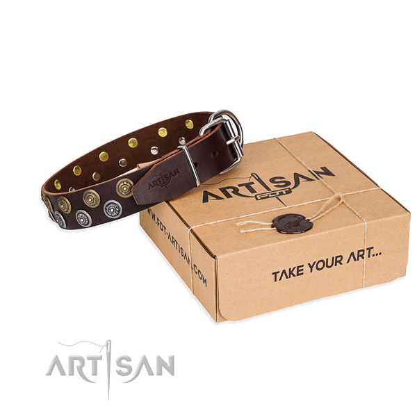 Easy wearing dog collar of strong leather with adornments