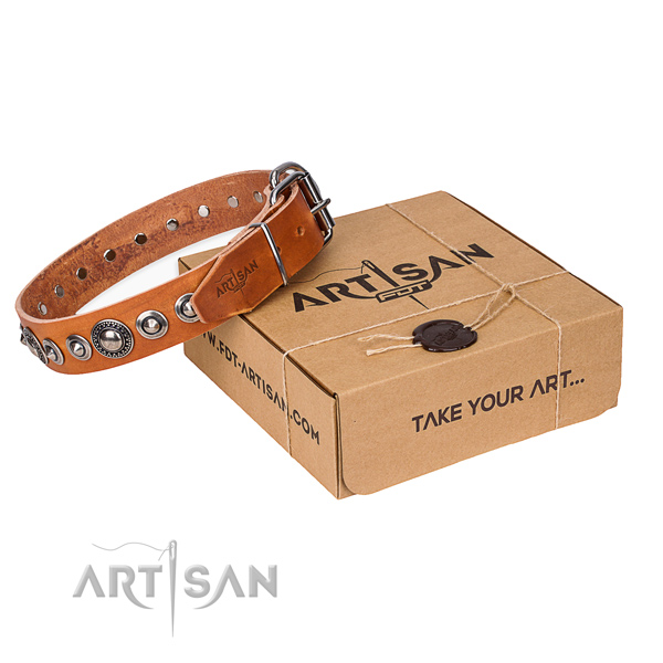 Full grain leather dog collar made of reliable material with rust resistant fittings