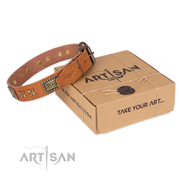 Corrosion proof buckle on genuine leather collar for your stylish four-legged friend