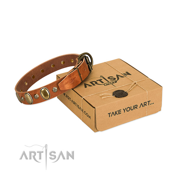 Remarkable full grain natural leather dog collar with corrosion proof buckle