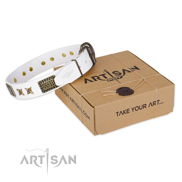 Reliable buckle on full grain natural leather collar for your stylish dog