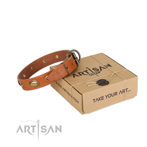 Exquisite full grain leather collar for your handsome dog