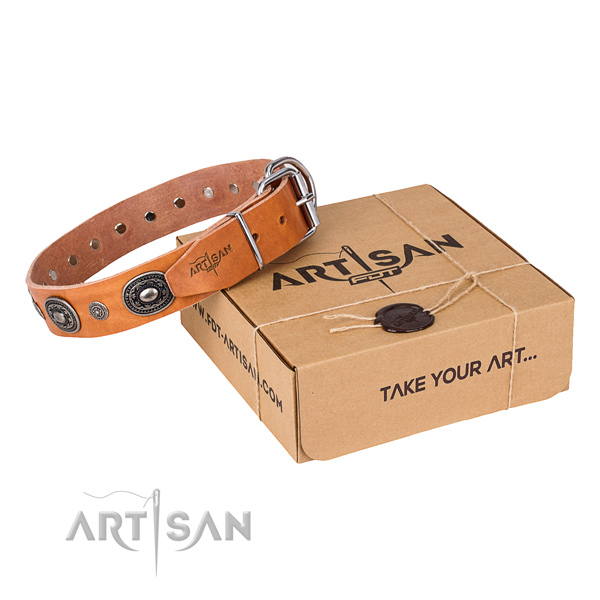 Best quality leather dog collar crafted for daily walking