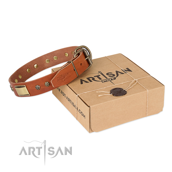 Stylish full grain natural leather collar for your beautiful four-legged friend
