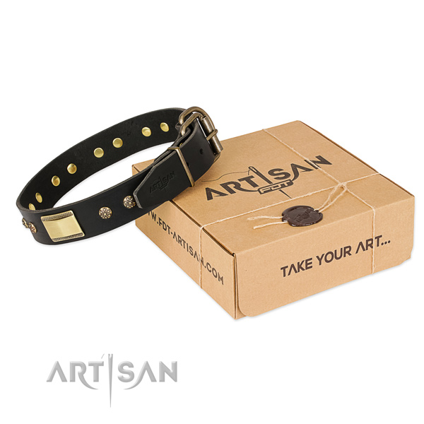 Best quality leather collar for your impressive dog