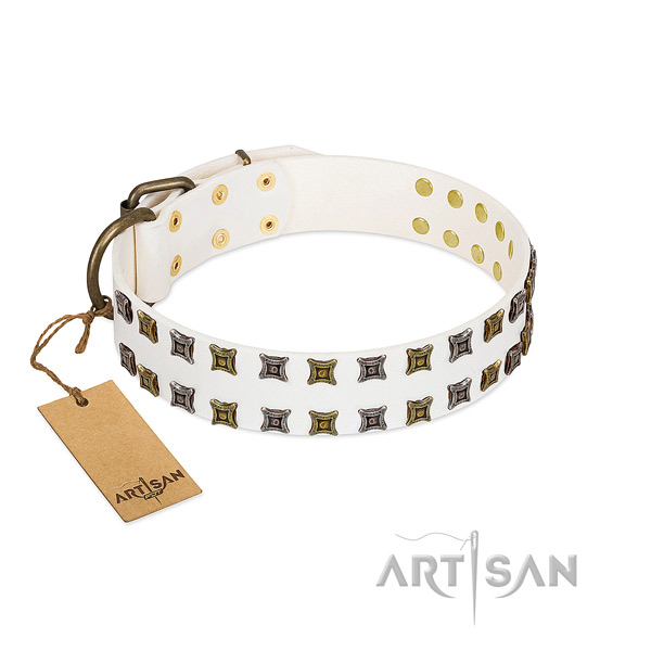 Full grain leather collar with designer studs for your four-legged friend