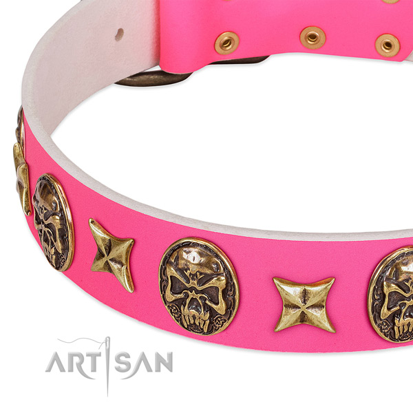 Full grain leather dog collar with unusual decorations