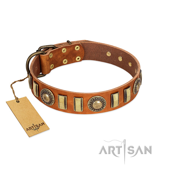 Unique leather dog collar with rust-proof traditional buckle