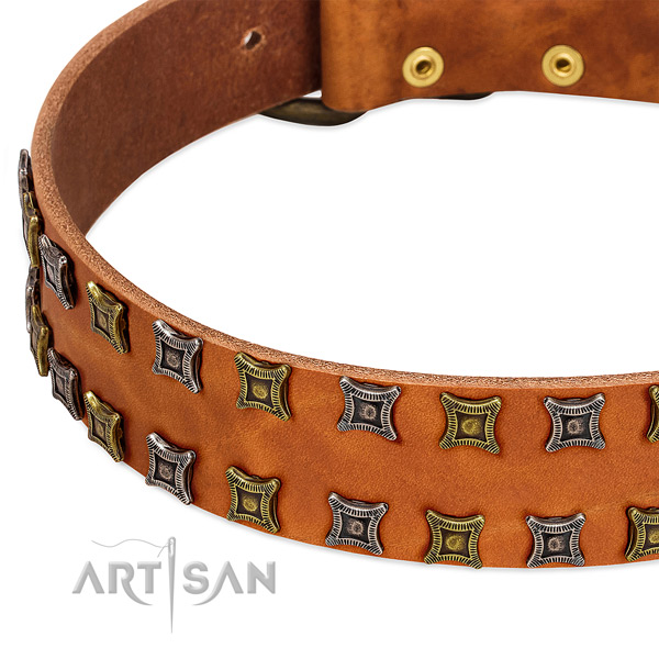 Strong full grain leather dog collar for your beautiful four-legged friend