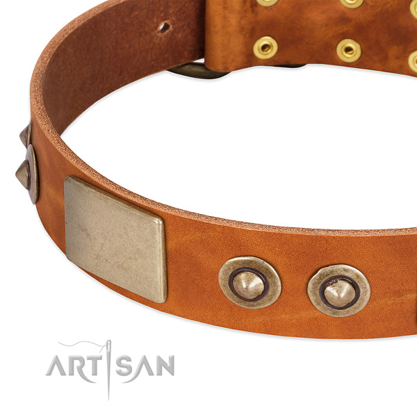 Durable D-ring on full grain genuine leather dog collar for your canine