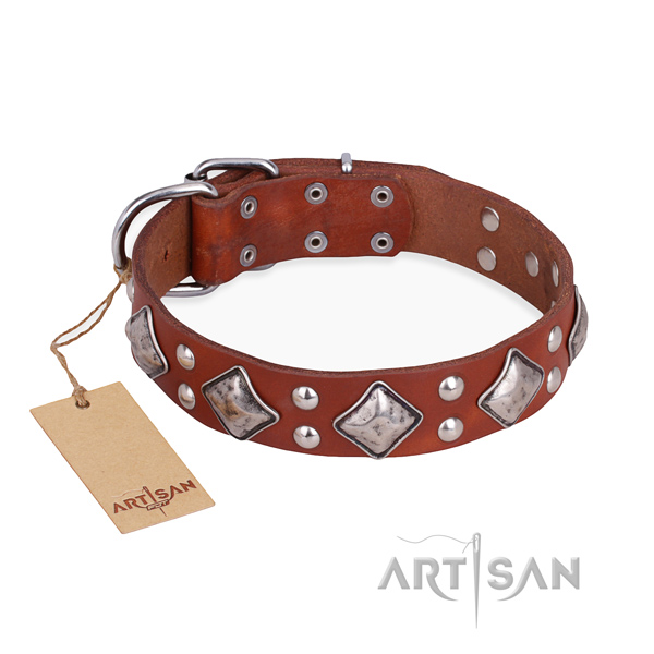 Fancy walking amazing dog collar with rust-proof buckle