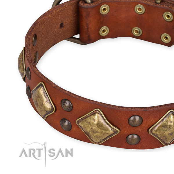 Full grain natural leather collar with rust-proof traditional buckle for your handsome pet