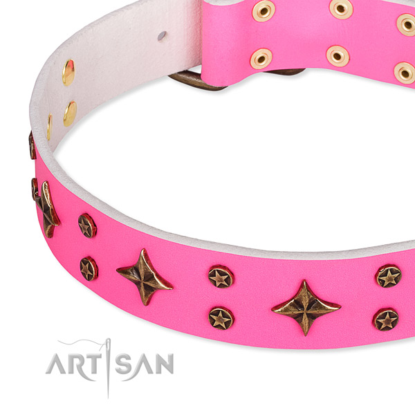 Fancy walking studded dog collar of best quality genuine leather