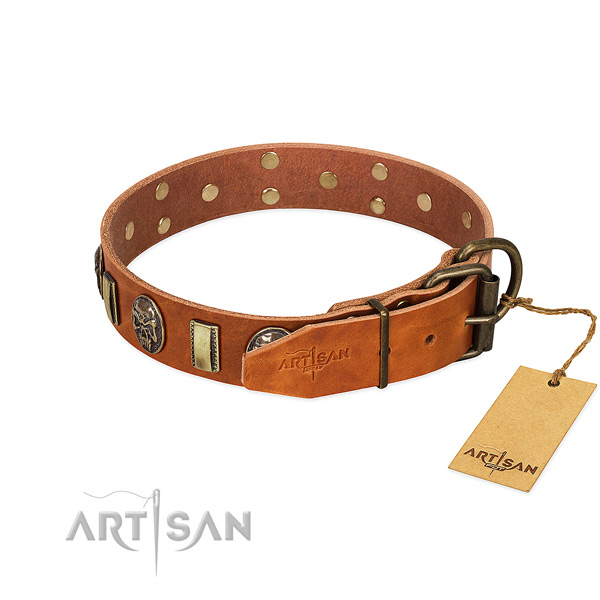 Corrosion proof buckle on genuine leather collar for basic training your doggie